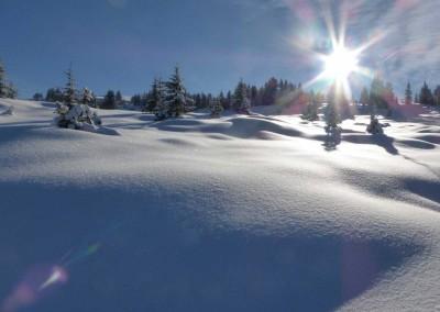 La tourbière en hiver