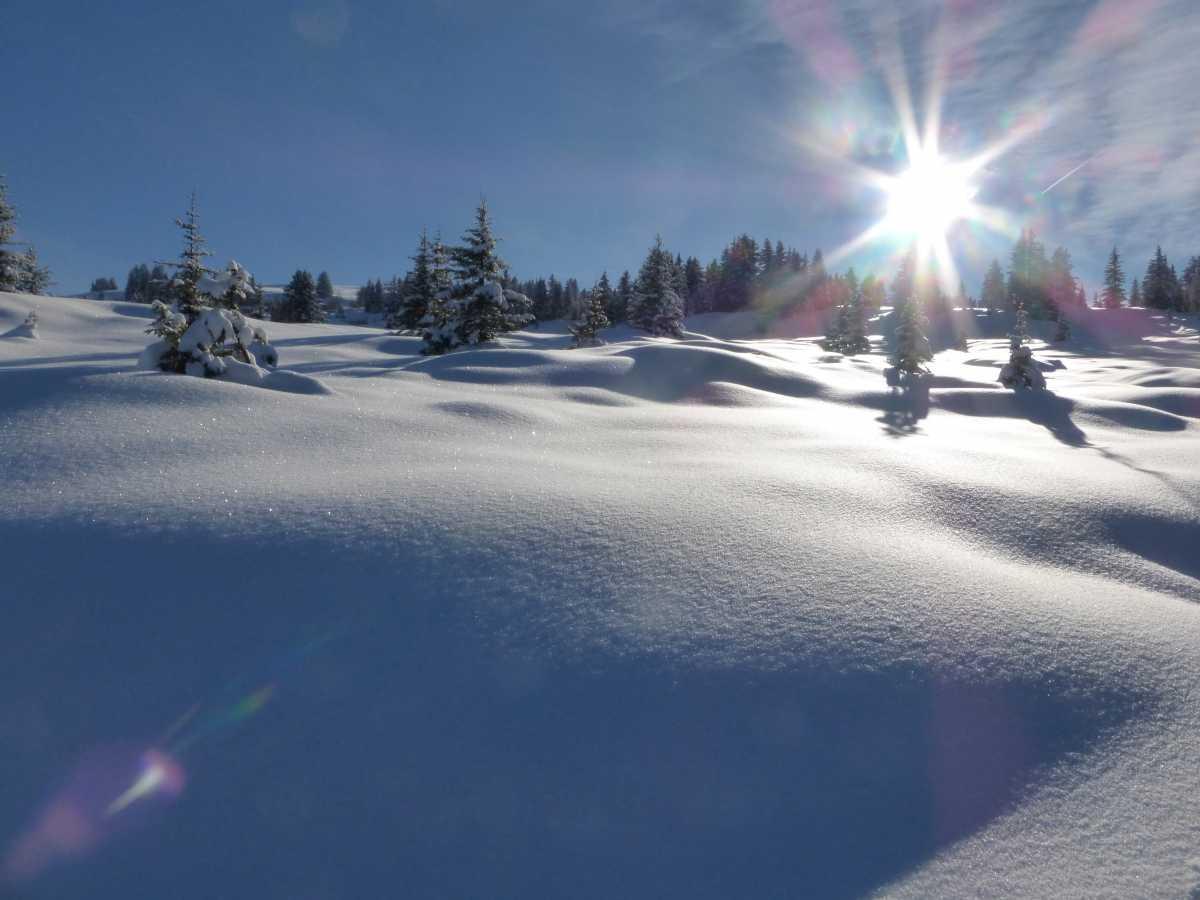 La tourbière des Saisies en hiver sous la neige