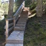 Escaliers sentier flore