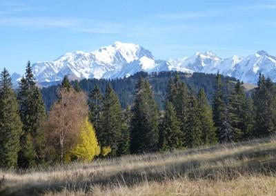 La tourbière des Saisies automne vue Mont Blanc