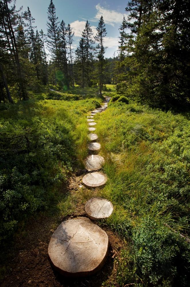 Sentier des Arpeliéres