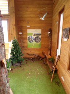 Coin forêt dans la maison des tourbières