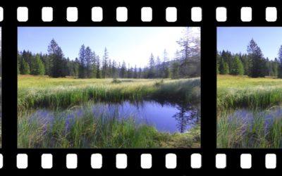 Marché pour la réalisation de 3 films sur la réserve naturelle